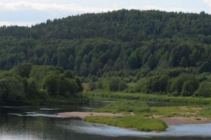 Экологические тропы ждут туристов