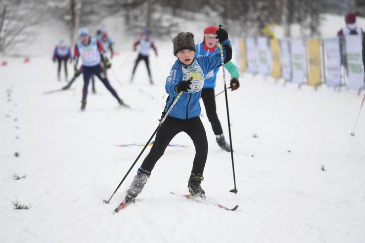 Новые правила для спортивных марафонов Ленинградской области