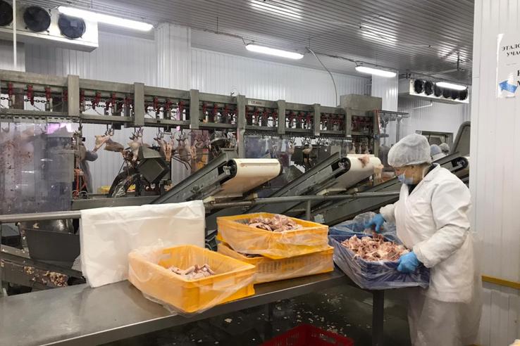 НАЦПРОЕКТЫ: мясопереработке помогают бережливые технологии