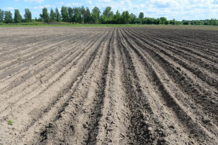 Область вновь выделяет гектары фермерам