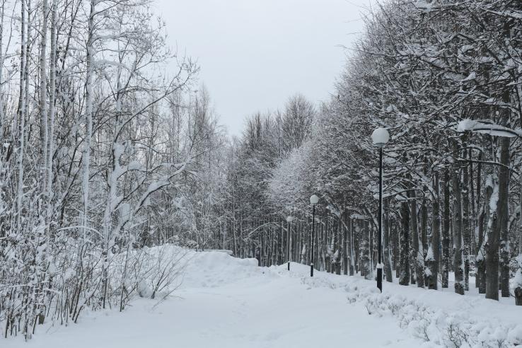 Снег — по стандарту
