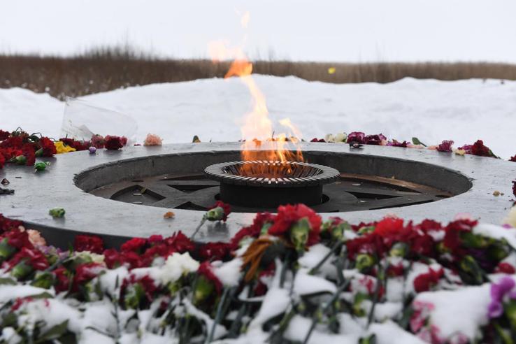 Ленинградская область раскрывает тайну века