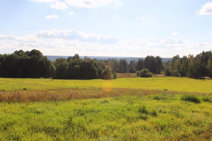 Еще 60 гектаров земли нашли своих хозяев