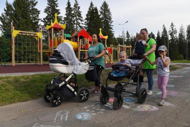 «Моя семья – моя Россия»: область готовится к старту конкурса
